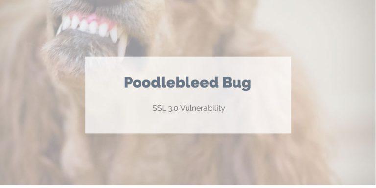 SSL protokol – ďalšia vážna chyba