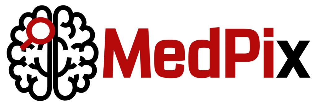 MedPix: Zjednodušenie analýzy medicínskych obrazových dát 1